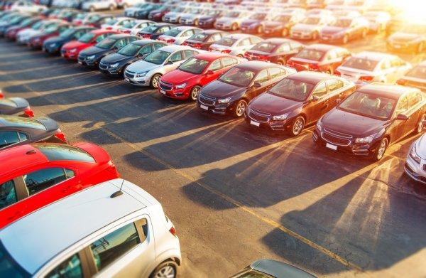 Autoforhandler Sjælland